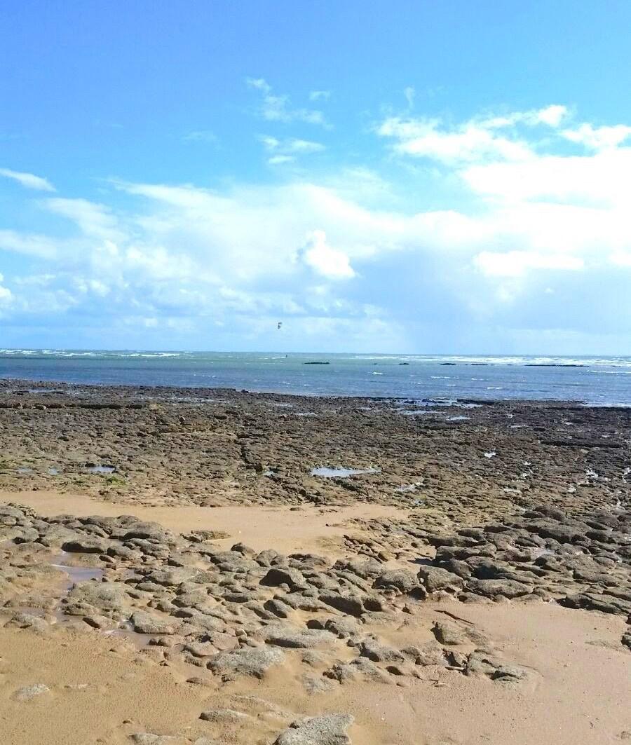 Rocky beaches at Ile de Ré, France