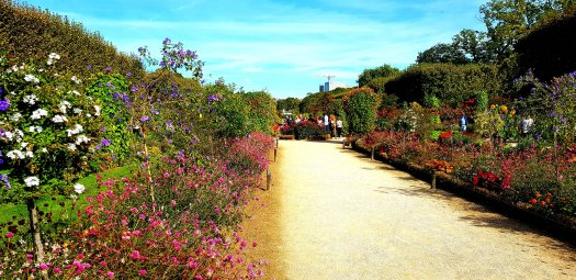 Discover one of Paris' amazing public parks. Jardin des Plantes Paris France
